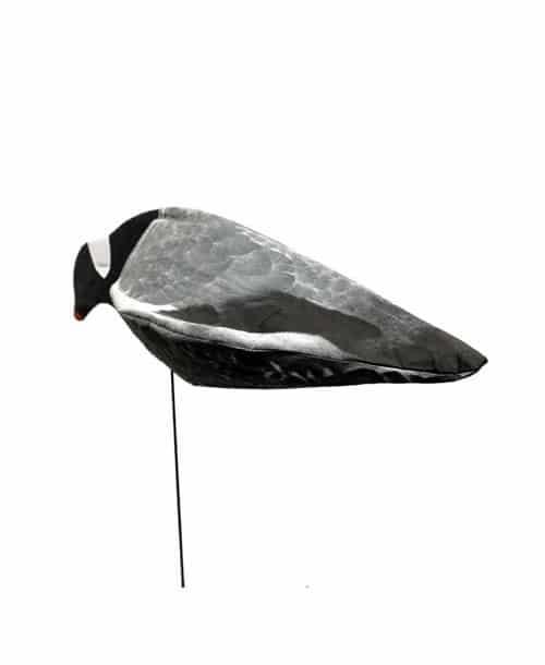sillosocks duif