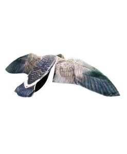sillosocks vliegende grauwe gans